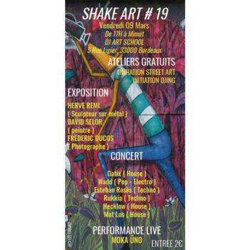Shake Art #19